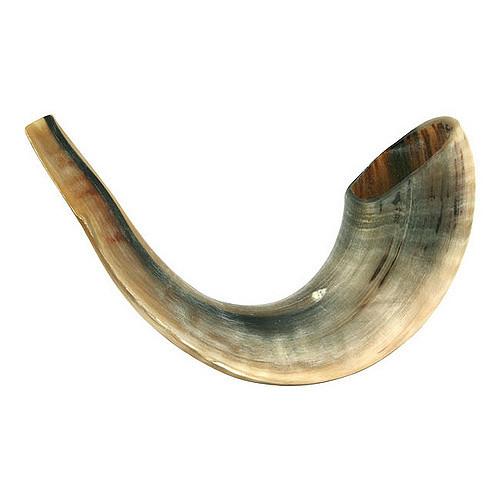 Șofar שופר