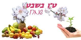 Tu Bișvat (15 a lunii Șvat). Cum a devenit această zi sărbătoarea pomilor?